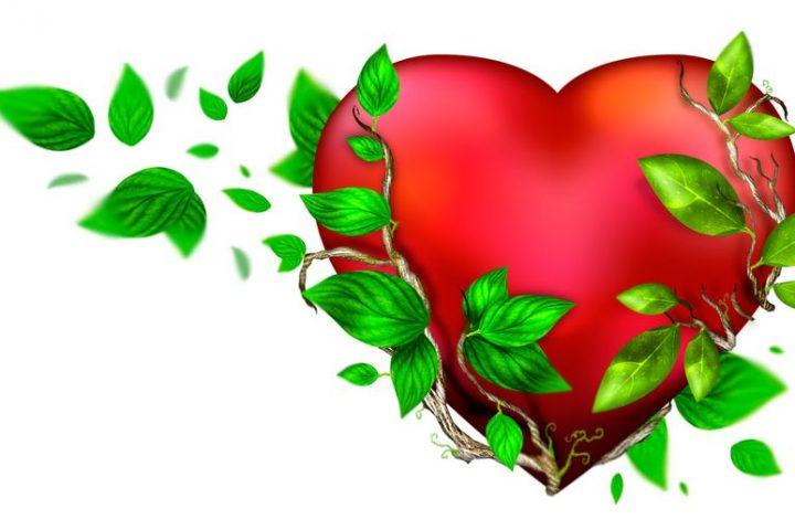В деня на влюбените покажете, че обичате природата